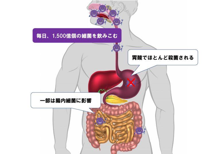 口腔内細菌数と腸内細菌数